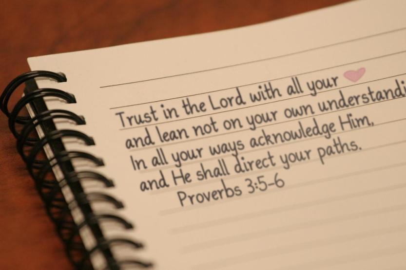 20 proverbs